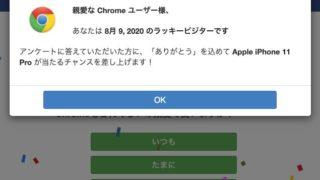 2020 アンケート chrome ビジター